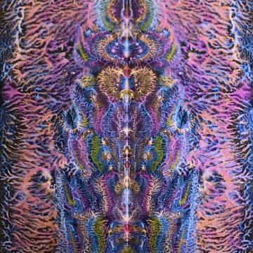 "Plant Guardian by Don Faia, Mixed Media 11"" x 14"""