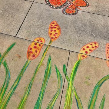 Sidewalk Monarch and Cattails by Linda Cover, Chalk