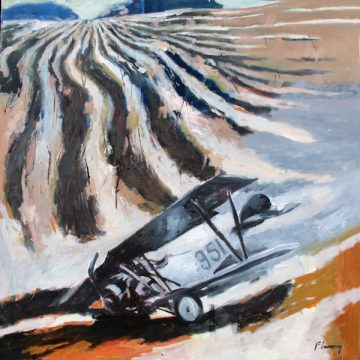 Crop Duster by David Fleming, Oil on Canvas