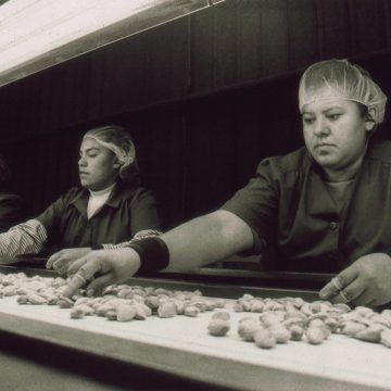 The Almond Sorters by Francisco Joseph Dominguez, Black and White Silver Print