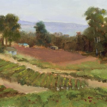 Growing Rows by Michelle Hausman, Oil on Canvas