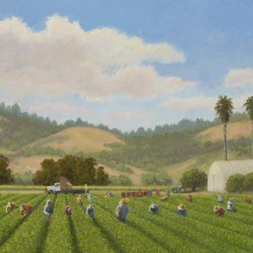 Summer Harvest by Ruth Carroll, Oil on Canvas