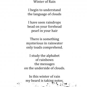 Winter of Rain by Jeff Arnett
