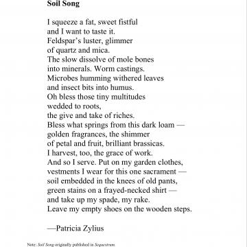 Soil Song by Michele Hausman