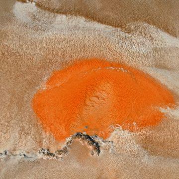 """Alien Landscape by Marty McGillivray, $150 (unframed), Photography, 12.5"""" x 18.5"""""""
