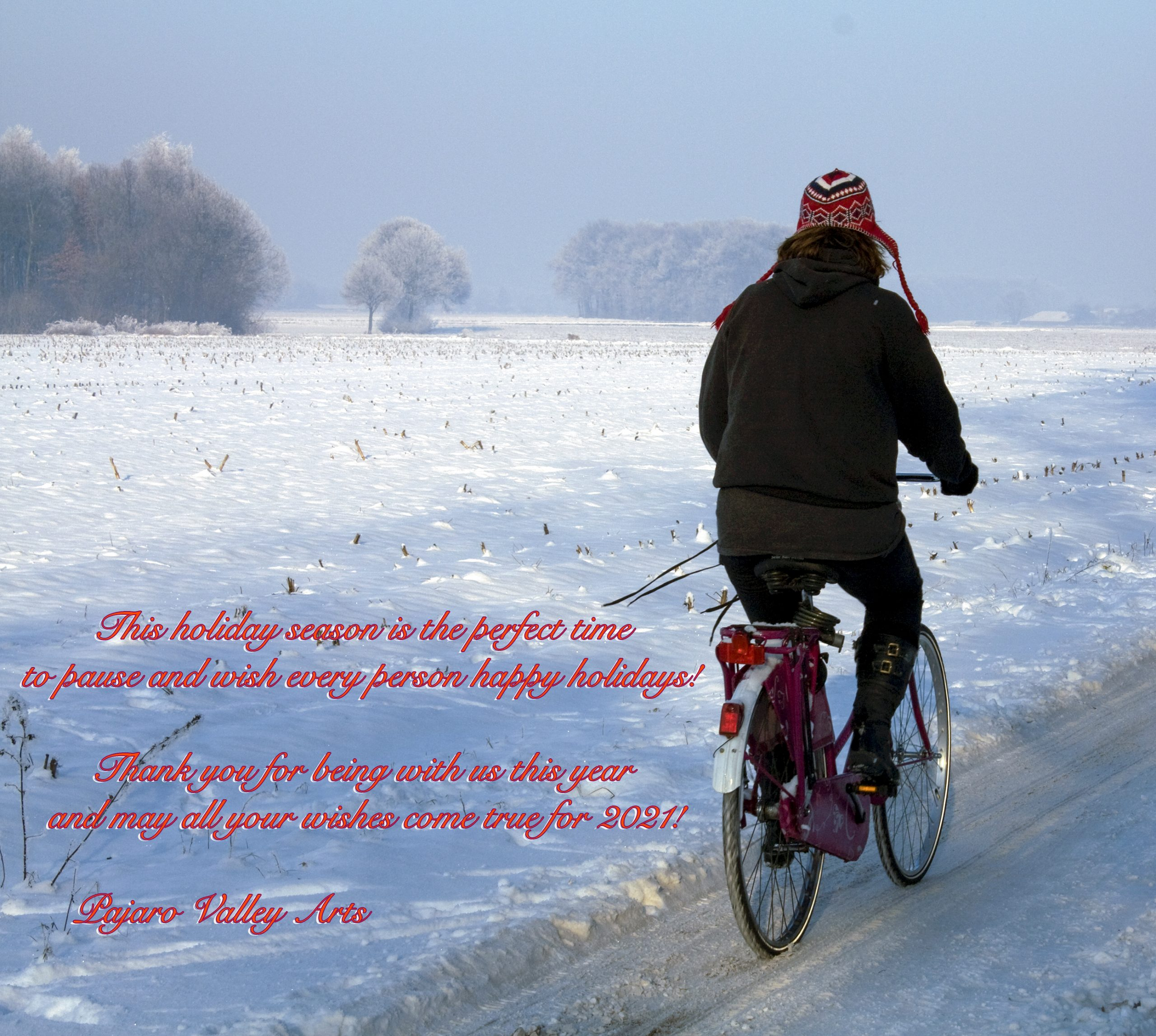bicyclist cycles through a snow landscape